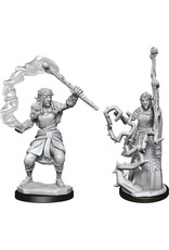 Wizkids W13 Firbolg Druid Female: D&D Nolzurs Marvelous Unpainted Minis