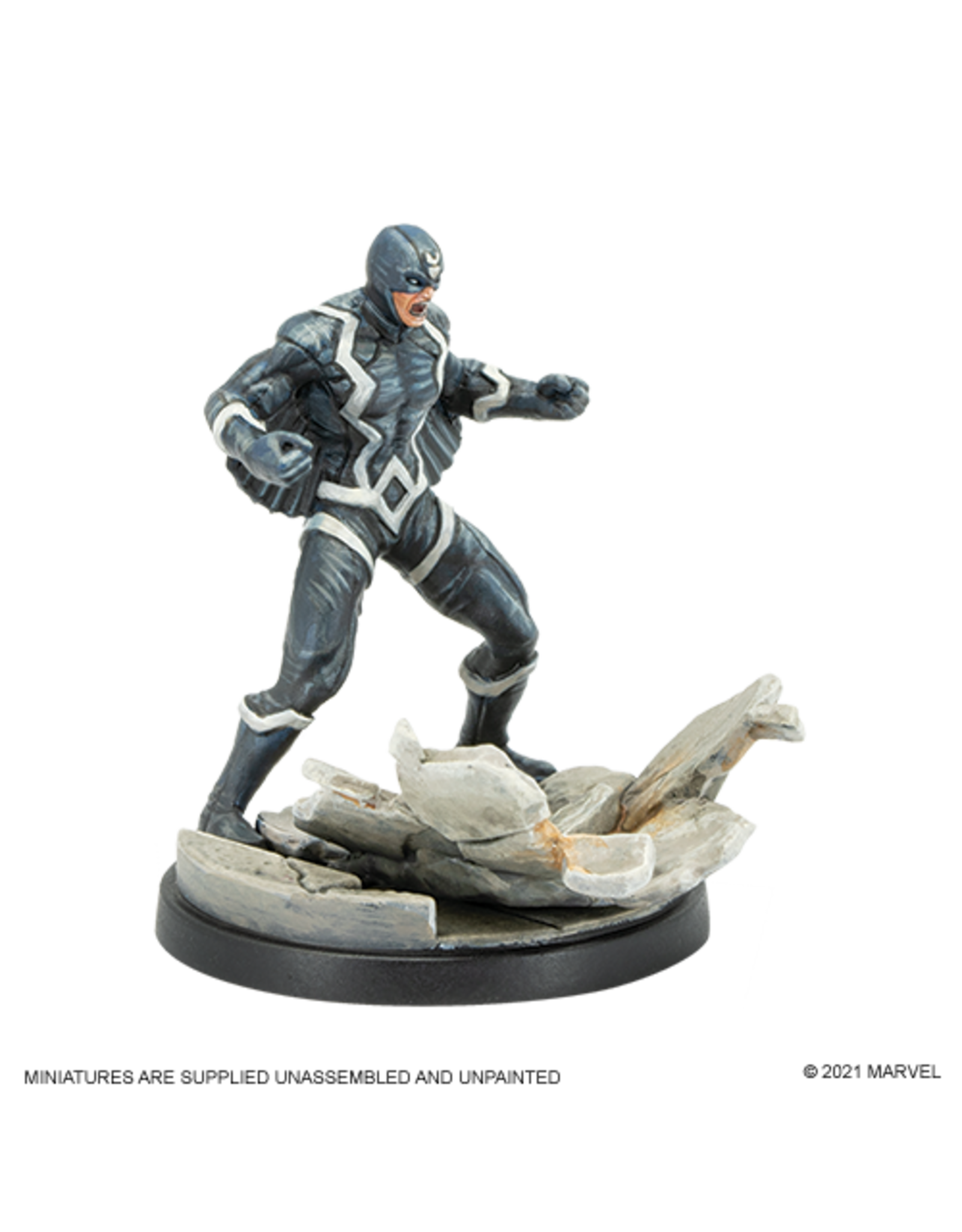 Atomic Mass Games Black Bolt and Medusa - Marvel Crisis Protocol