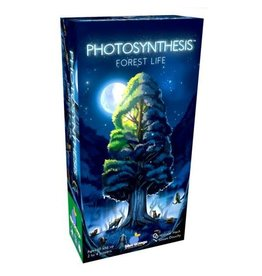 Blue Orange Photosynthesis: Under the Moonlight