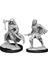Wizkids D&D Nolzurs Unpainted Minis: W14 Warforged Rogue