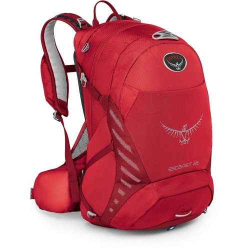 OSPREY OSPREY ESCAPIST 25 DAY PACK