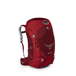 OSPREY OSPREY ACE 38L CHILDREN'S HIKING BACKPACK