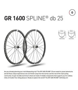 DT Swiss DT Swiss Wheelset GR1600 700c 12x142, 12x100, 18 Tooth Ratchet, CL 6 Bolt Disc Brake