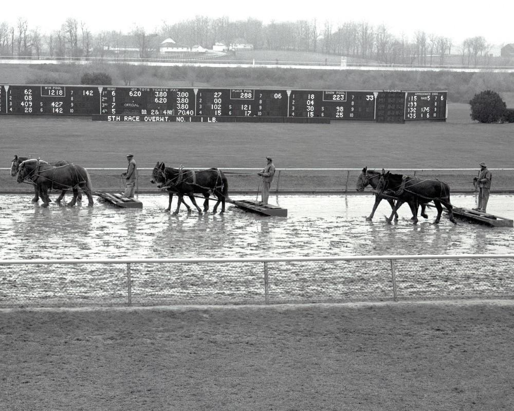 Sealing the Track at Keeneland 11x14