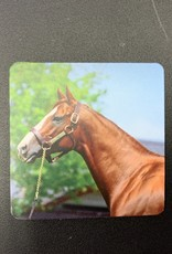 California Chrome Magnet