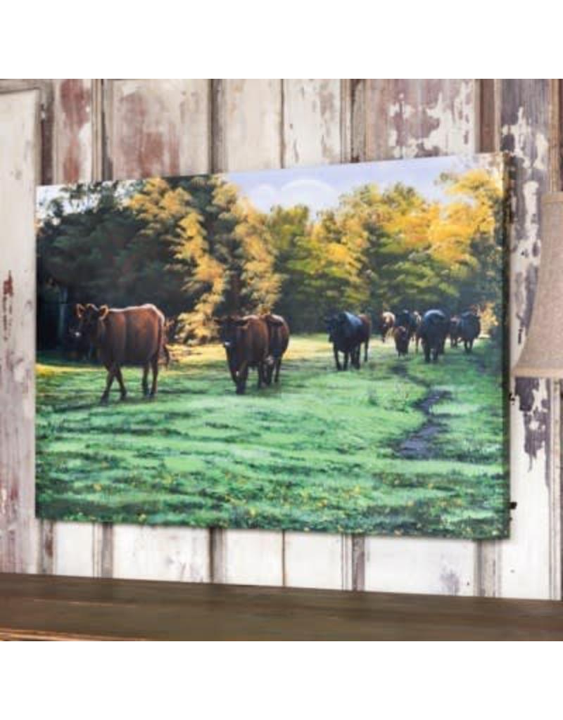 ST. Joseph's Cow Pasture MB4357
