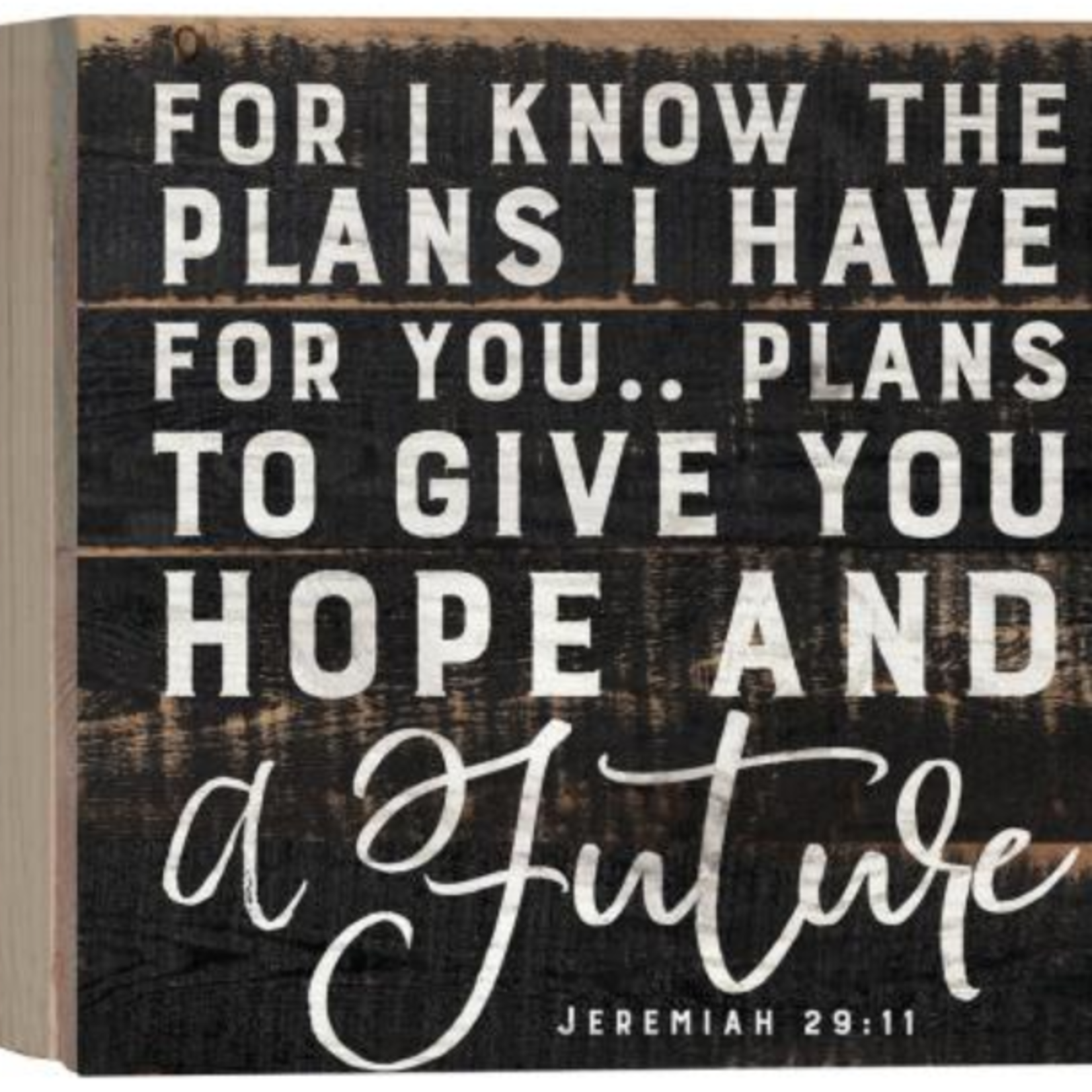 For I Know The Plans Sign PNL0578