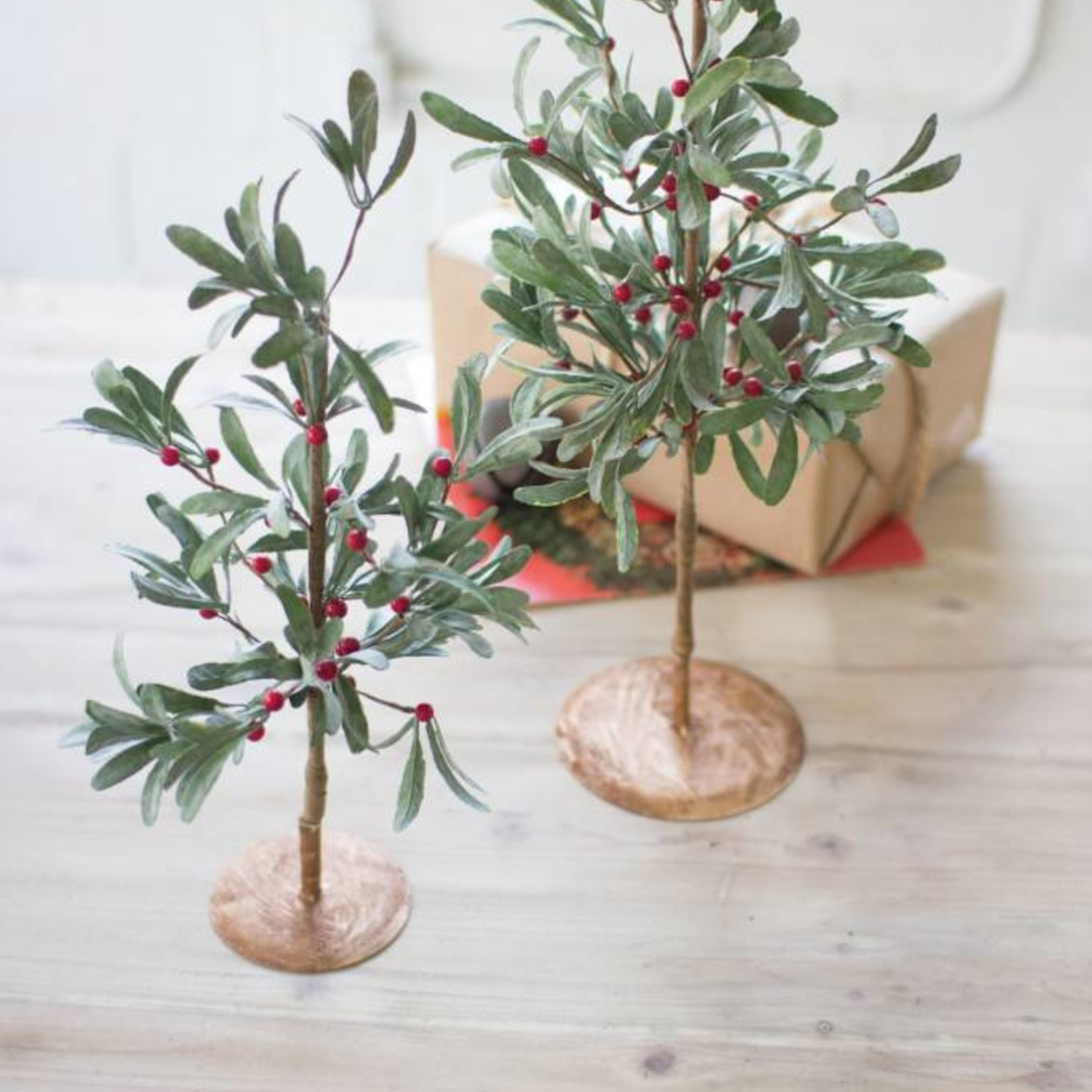 Small Mistletoe Tree CGL4031