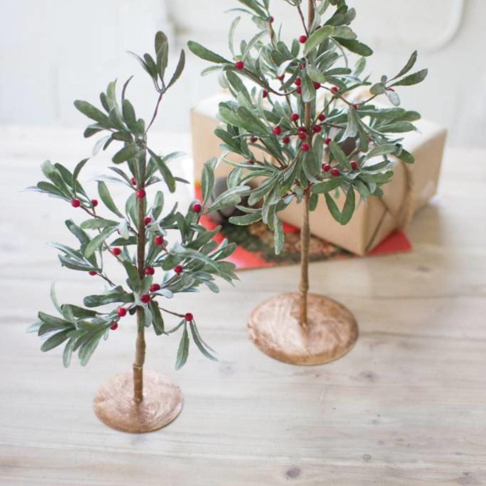 Large Mistletoe Tree CGL4031