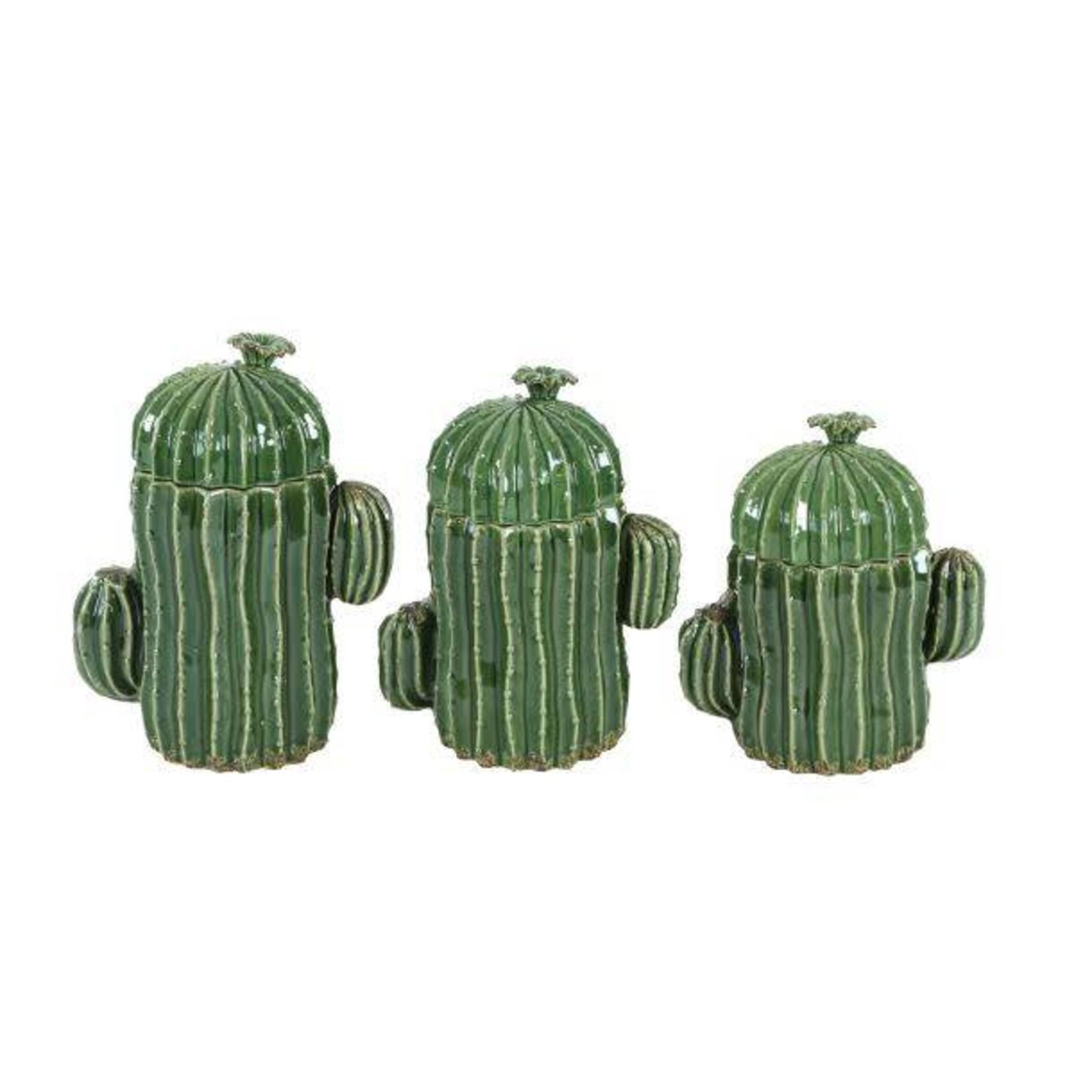 Medium Cactus Jar 56765