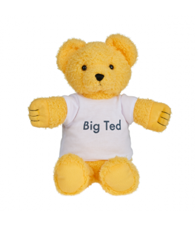 PLAY SCHOOL - BIG TED