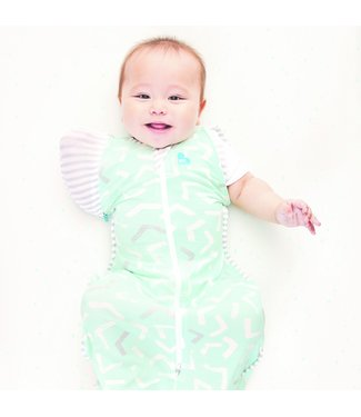 LOVE TO DREAM SWADDLE UP TRANSITION BAG -  BAMBOO LITE