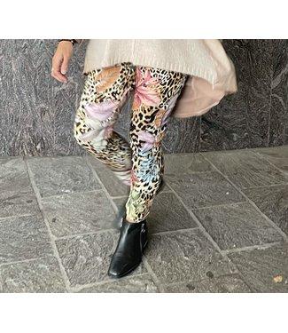 RAINBOW SAFARI PANTS