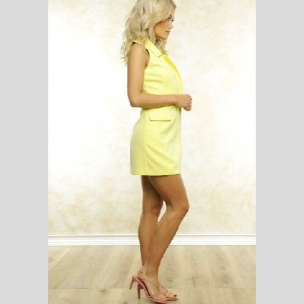 Fletch Olivia Vest Dress