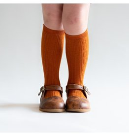 Little Stocking Co Pumpkin Spice Knee High Socks