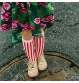 Little Stocking Co Candy Stripe Knee Highs