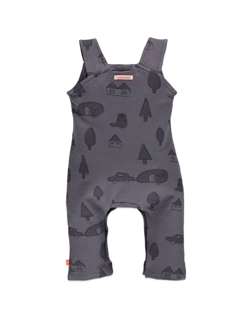 Baby Boys Suit, Shadow