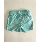 Mint Swim Shorts