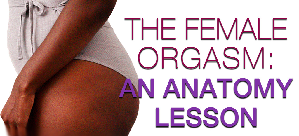 The Female Orgasm: An Anatomy Lesson