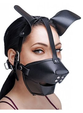 1 Master Series Pup Play Hood & Ball Gag