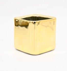Everyday Square Svek Pot - Gold
