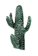 Everyday Modern Cactus Hook