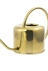 Everyday Brass Watering Can