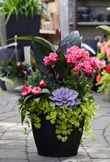 Everyday Patio Planter Workshops