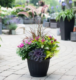 Everyday Fall Planter Tues. Sept 17