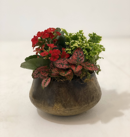 Christmas Small Tin Floral Arrangement