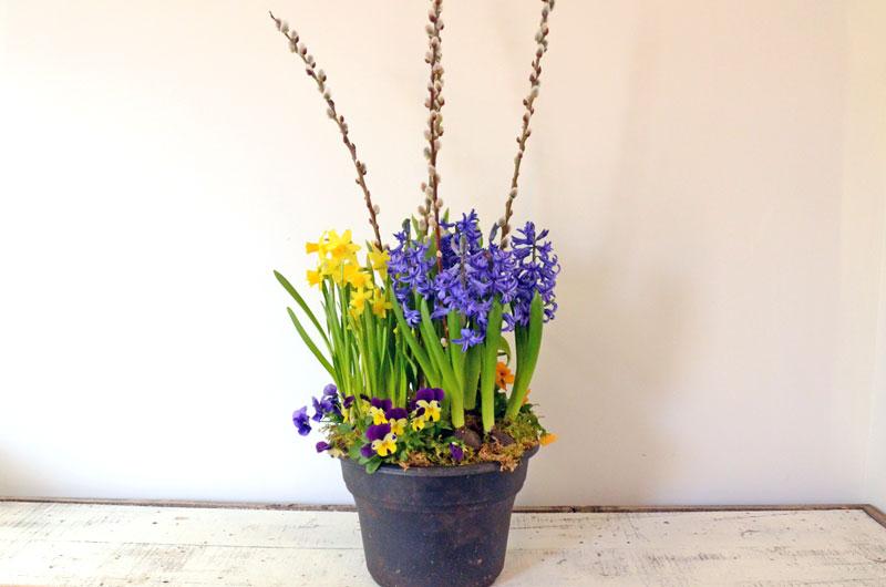 Everyday Outdoor Planter Workshop - April 1st