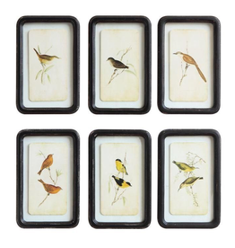Everyday Bird Print with Black Distressed Wood Frame