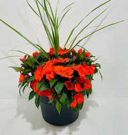 """Everyday 12"""" New Guinea Impatiens Patio Planter - Orange"""