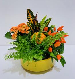 "Fall 8"" Fall Arrangement in Yellow Glass Bowl"