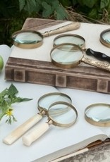 Everyday Magnifying Glass