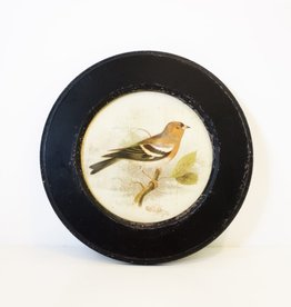 Everyday Vintage Round Bird Prints