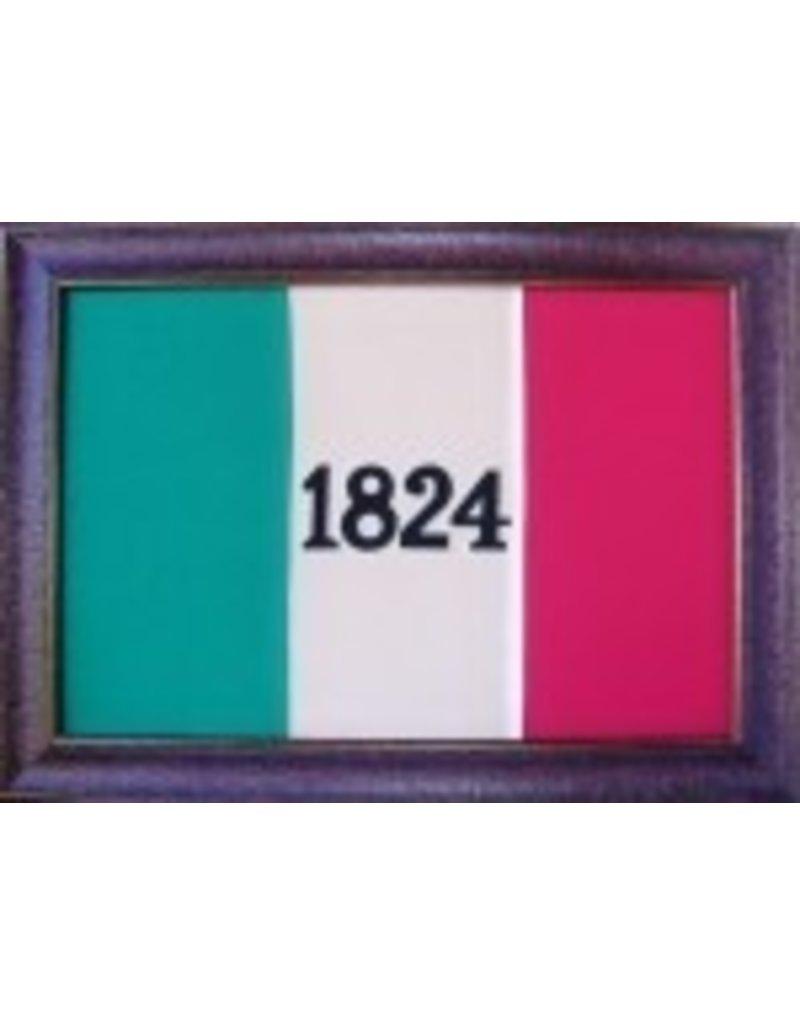 Texas Art - Large 1824 Flag