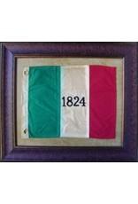 Texas Art - Medium 1824 Flag