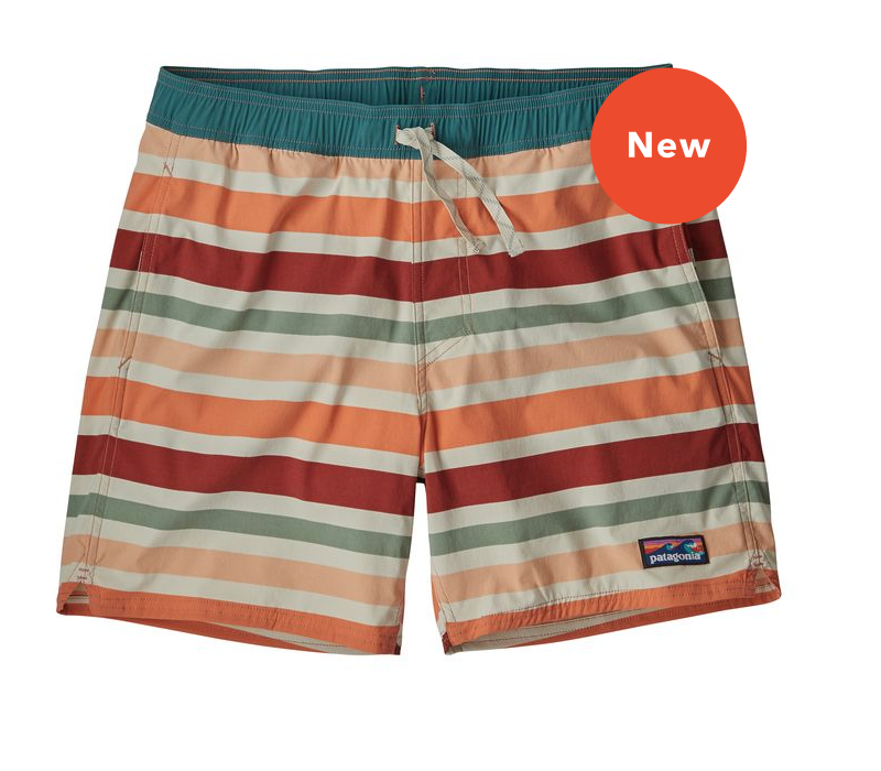 Pagagonia M's Stretch Wavefarer Volley Shorts 16in