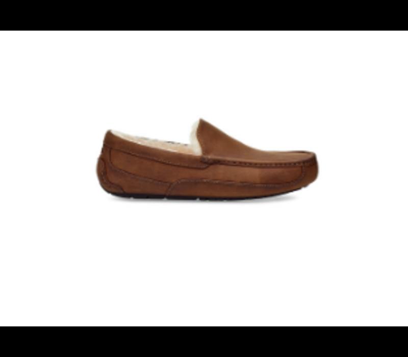 UGG M's Ascot Slipper