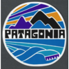 Patagonia Patagonia Fitz Roy Rights Sticker