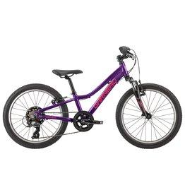 GARNEAU TRUST 201 Purple O/S