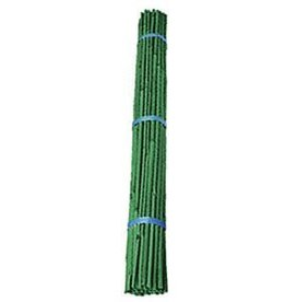 Bamboo Green Stakes 6-8 mm 48""