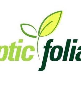Optic Foliar Optic Foliar - 60 ml 4 Pack