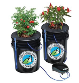 Alfreds Alfred DWC 2 Plant System