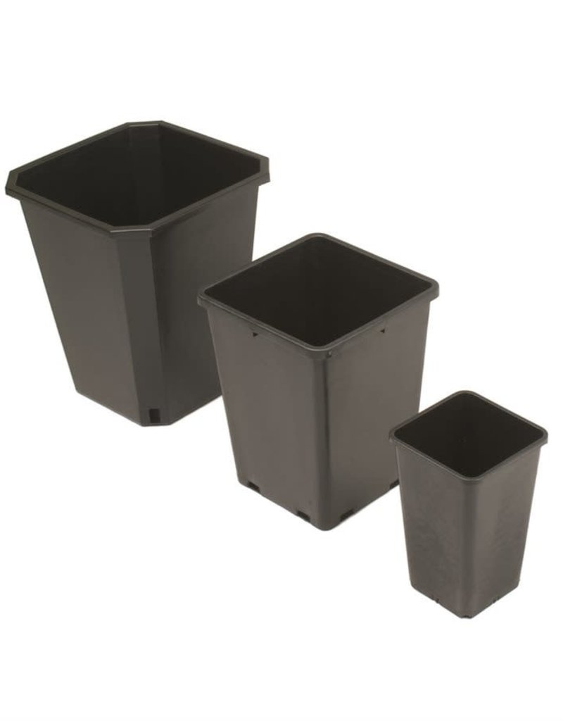 1 Gal Square Pot