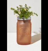 Modern Sprout Garden Jar QT - Chamomile