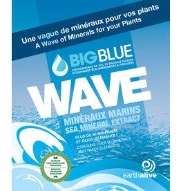 Earth Alive Earth Alive - Wave 250 ml