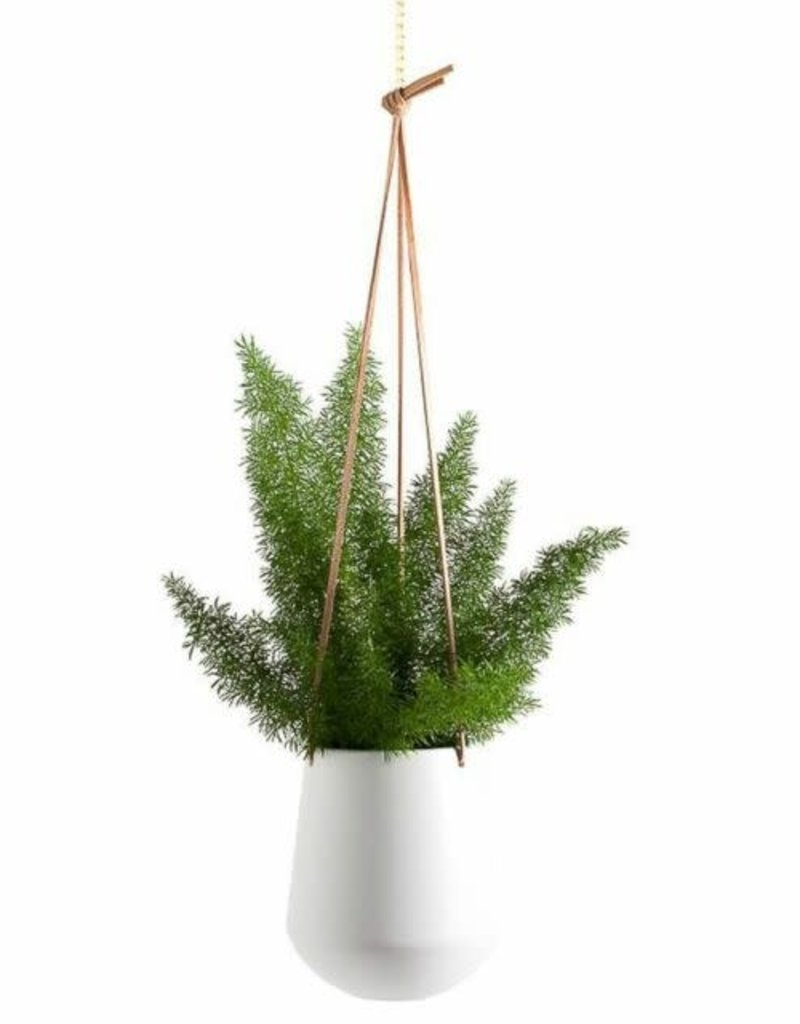 "Ashbury Leather Hanging 5.75"" White Ceramic Drop Pot Planter"