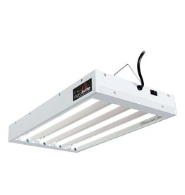 Agrobrite Agrobrite T5 2Ft 4 Tube Fixture w / Bulbs
